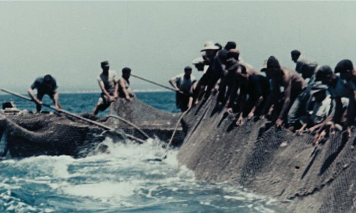 Pêcheurs et activités de pêche-2 contadini-del-mare-1
